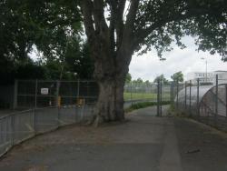 Brampton Manor School