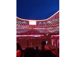 An image of Allianz Arena uploaded by manning654