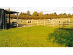 Bracken Park