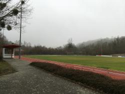 Burgwiesenstadion Rasenplatz