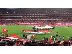 An image of Estadio da Luz uploaded by pedrolb