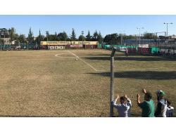 Estadio Román Pascual