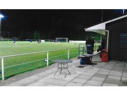 Fitzwilliam Stadium