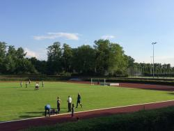 Hoeschpark Hauptplatz - Rasen