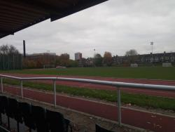 Ladywell Arena