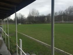 Purvis Park