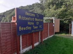 Ribbesford Meadow