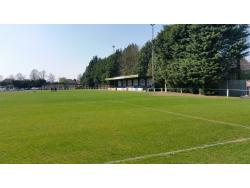 An image of Roker Park uploaded by kevincwyatt