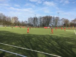 Sportplalz am Stadtpark Kunstrasen