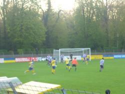 Stadion am Hermann-Lons-Weg - RASEN