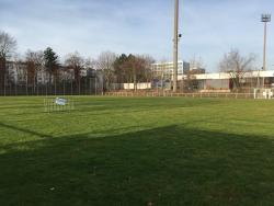 Sudstadion - kleiner Rasen-Nebenplatz