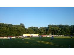 The Autonet Insurance Stadium