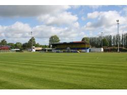 The Dog & Duck Football Ground