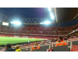 An image of The Emirates Stadium uploaded by ccfc4life