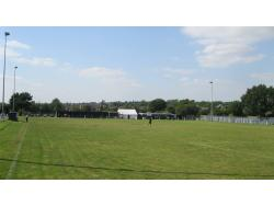 The Stag Ground