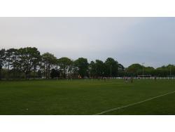 Toms Field