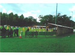 Topps Park
